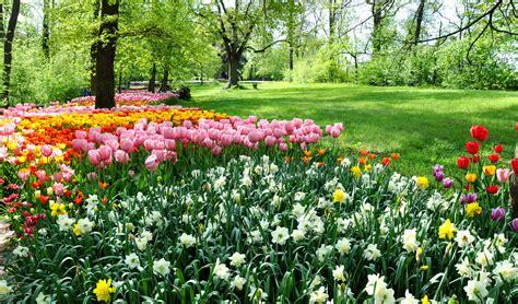 giardino in fiore parchi e giardini in fiore dove si trovano quelli pi 249