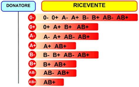 gruppo sanguigno a positivo alimentazione dieta gruppo sanguigno dieta gruppo sanguigno 0