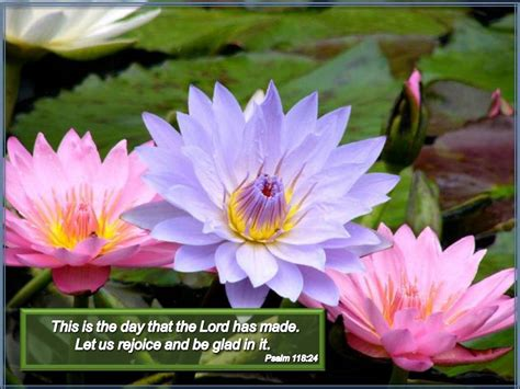 uplifting quotes bible easter quotesgram