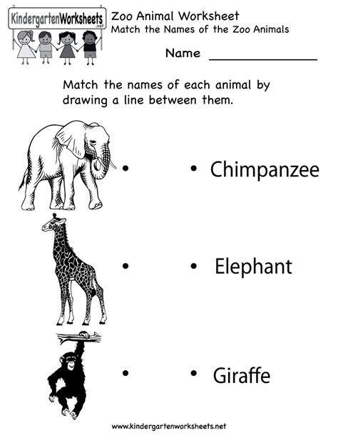 printable zoo animal worksheets kindergarten zoo animal worksheet printable worksheets