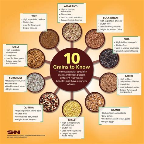 whole grains names 17 best images about infographics on craft