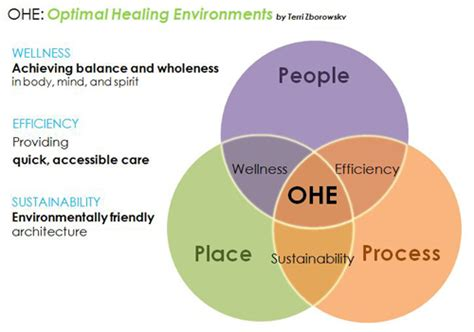 design community environment inc architecture students explore healing healthcare design