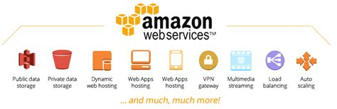 amazon server amazon web services cloud services by amoeba networks