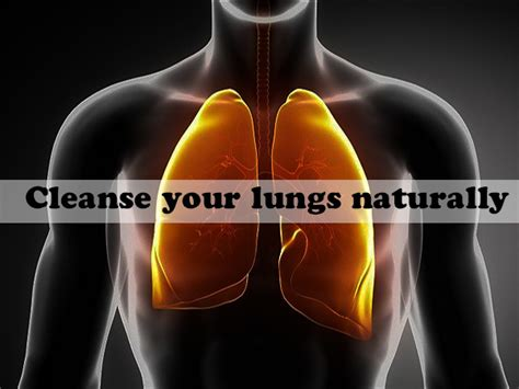 Detox Your Lungs From by Cleanse Your Lungs Naturally Cancer Healer Center