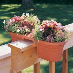 planters wayfair