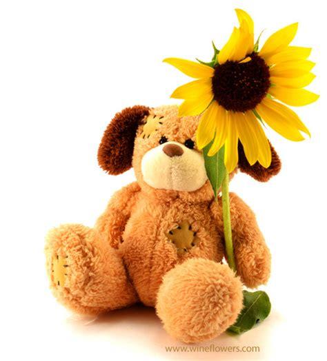 fiori peluche spedire e consegnare fiori ed orsacchiotti di peluche in