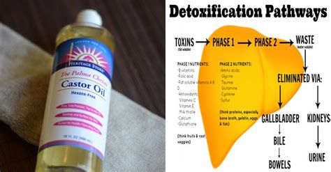 Joint Swelling Liver Detox by 89 Best Remedies Images On