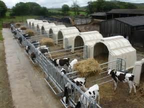 calf tel hutches calf tel housing a gallery on flickr