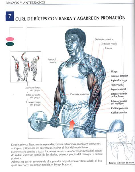 imagenes de ejercicios para workout aporte se acerca el verano y quer 237 as estar en forma