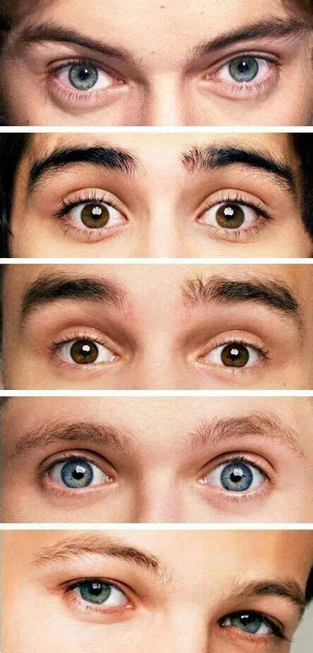 louis tomlinson eye colour 207 best images about eyes on pinterest eye color zayn