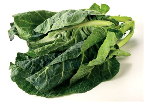 spring greens riviera produce cornwall s grower of choice