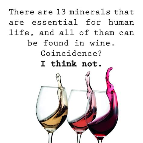 funny wine quotes memes images  pinterest