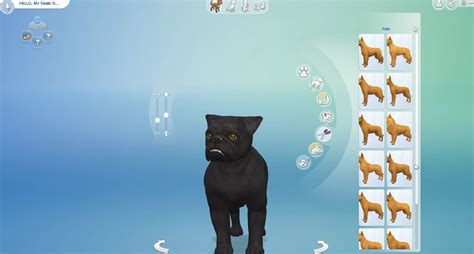 sims 4 cats and dogs the sims 4 cats dogs 45 create a pet screenshots hq simsvip