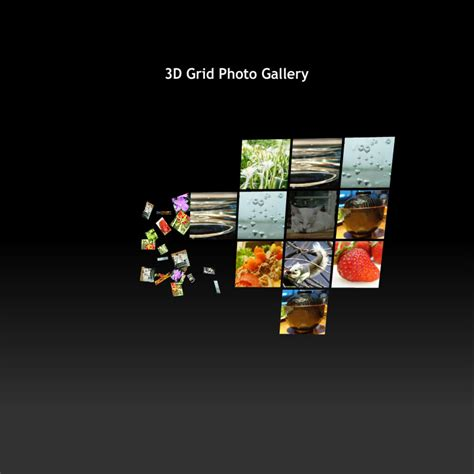 flash template 121 3d grid gallery