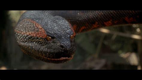 Kaos 3d Snake Eye wallpapers anaconda wallpaper cave