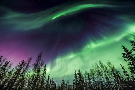 alaska northern lights 2018 alaska s auroras northern lights workshop 4 mar 2018