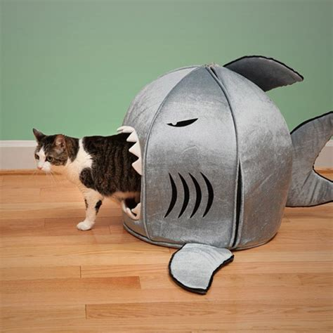 funny dog beds funny shark pet houses with nanotechnologies digsdigs