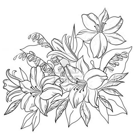 Outline Sketches Of Flowers by Sunbeamflowers Flowers Outlines