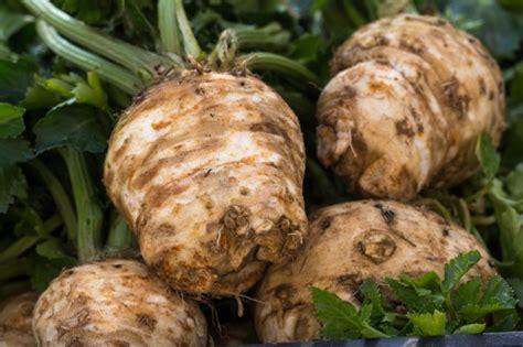 calorie sedano rapa tuberi e radici qual 232 la differenza agrodolce