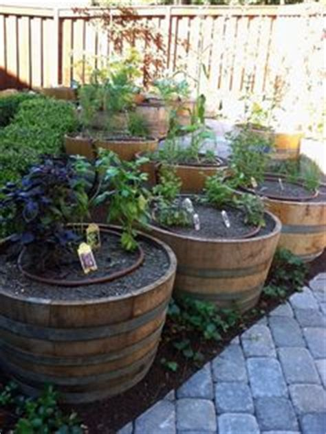 barrel planter with 3 pots resin water feature wine barrel planters are for growing tomatoes you