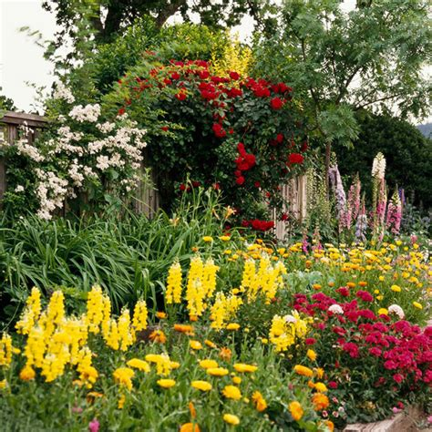 Annuals In The Landscape Annual Garden Flowers