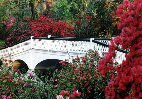 Charleston Botanical Gardens Magnolia Plantation Gardens In Charleston Sc 843 571 1