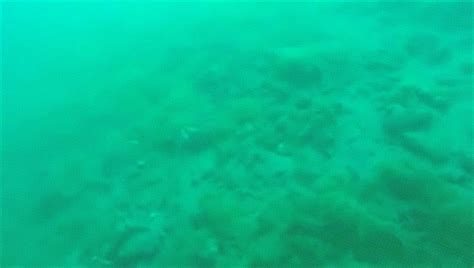 earthquake underwater see an underwater earthquake captured on video by a scuba