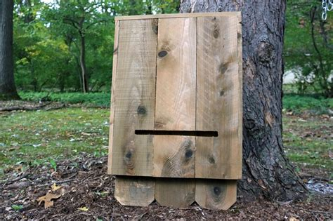 plans for building a bat house how to build a bat house how tos diy