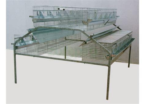 gabbia conigli ingrasso gabbia per 48 conigli da ingrasso a 24 fori 2 piani centrali