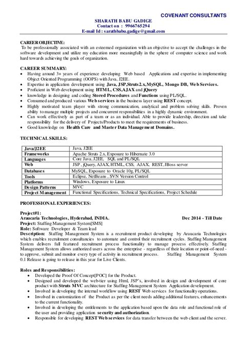 Resume Summary Exles Technical Resume Sle Java Technical Lead Resume Java Technical Project Manager Resume Java Technical