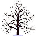 membuat gif animasi di android kumpulan animasi 50 gambar pohon bergerak unik untuk ppt