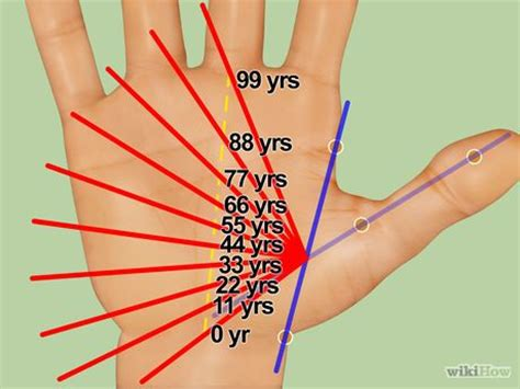 know how to read your own hand – palmistry   mcr world