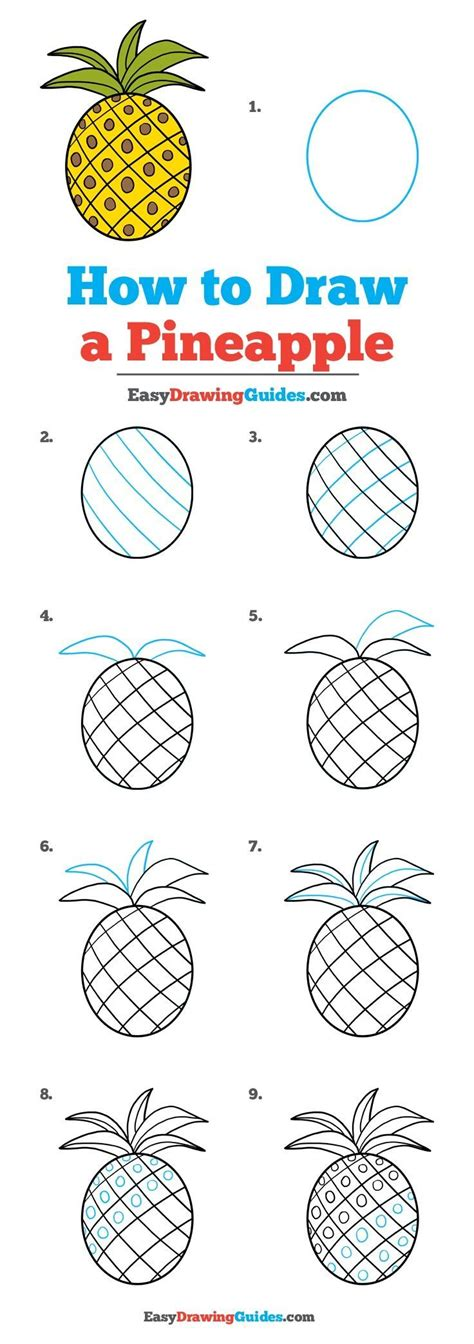 Drawing Y Mx C by How To Draw A Pineapple Really Easy Drawing Tutorial