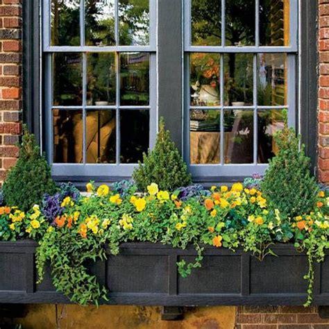 decorative window boxes decorative window boxes delight