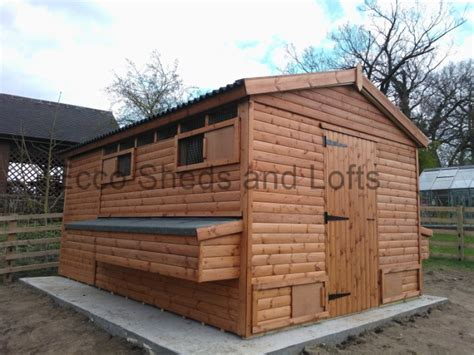 Pigeon Sheds by Animal Housing Ecco Sheds And Pigeon Lofts