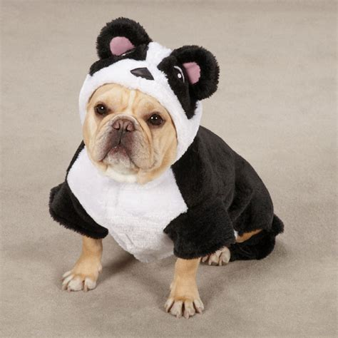 panda puppy panda costume lovadog department store for dogs