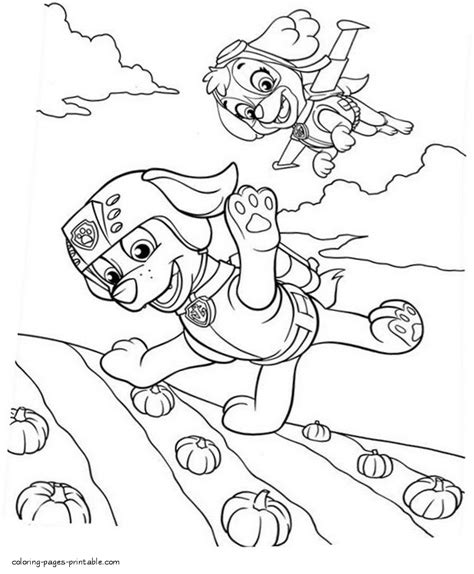 coloring page zuma free printable coloring pages paw patrol zuma and skye