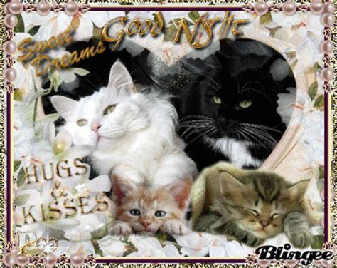 good night  sweet dreams  dear friends  blingee p picture  blingeecom