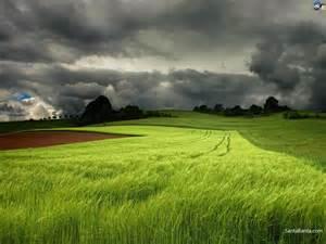 Free Download Landscapes HD Wallpaper #275