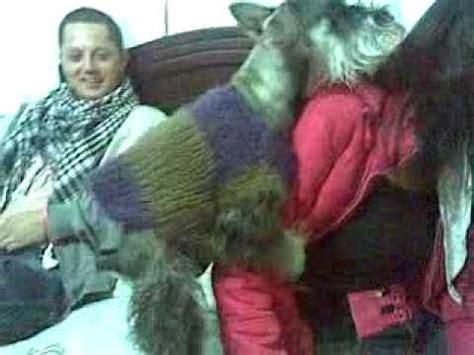 mujer cojiendo con perro y pegada por el culo perro viola a chica vidoemo emotional video unity