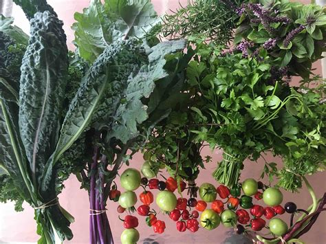 Garden Ready Vegetable Plants Lecture Information Edible Landscaping With Rosalind