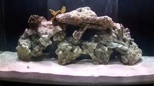how to aquascape a reef aquarium