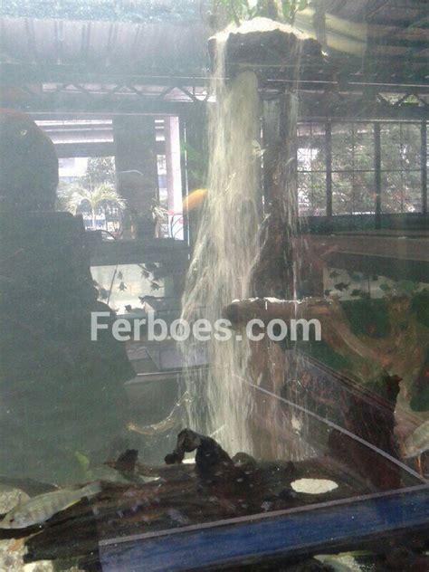 Pompa Aquarium Paling Awet wpid cara membuat air terjun di aquarium 1 jpg jpeg