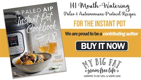 paleo instant pot cookbook top 100 paleo instant pot recipes lose fast with healthy paleo recipes and your electric pressure cooker books recipe review swedish meatballs and gravy from