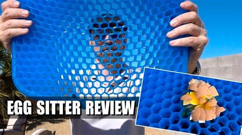 Egg Sitter Review Does This Support Cushion Work Freakin Reviews » Home Design 2017