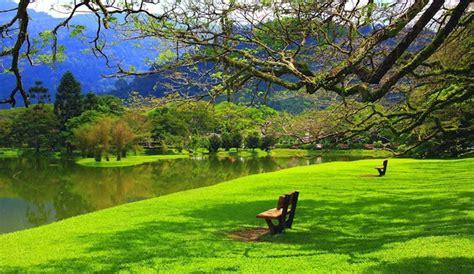 imagenes de jardines maravillosos espacios verdes m 225 s que lugares bonitos hoteles city