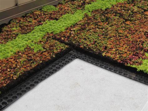 green living roof waterproofing green living technologies
