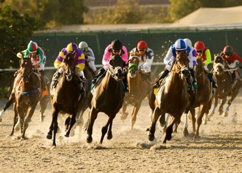 How To Win Money On Horse Racing - betting on horse racing how to bet on sports wagerweb s blog