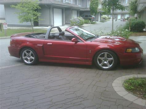 svt cobra mustang club 2004 ford svt cobra convertible 23000 canadian
