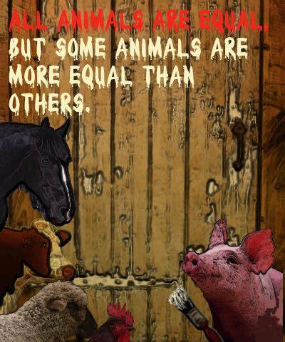 equal time books animal farm the bookbimbo chronicles